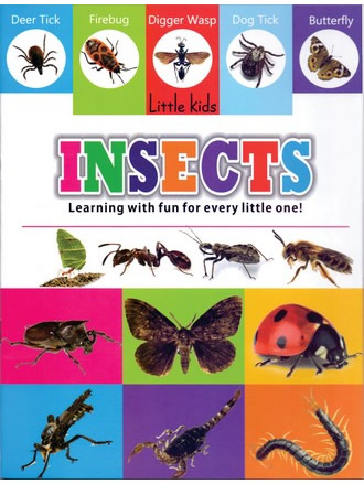 LITTLE KIDS BOOK INSECTS
