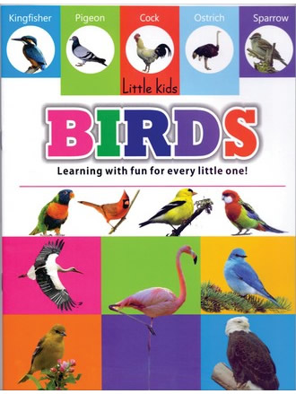 LITTLE KIDS BOOK BIRDS