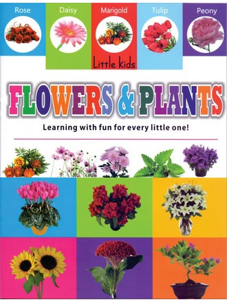 LITTLE KIDS BOOK FLOWERS & PLANTS